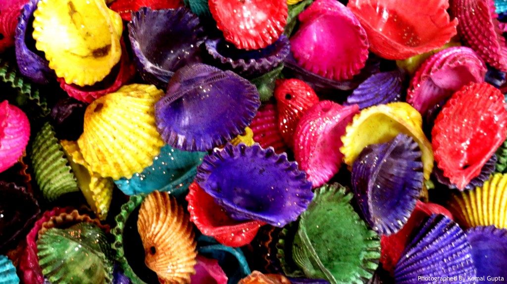 Painted Sea Shells (Photographed By Komal Gupta)