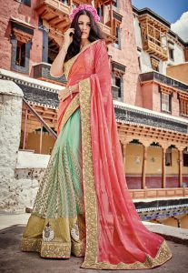 Half N Half Chiffon and Net Saree in Coral and Pastel Green