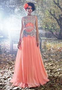 Embroidered Net Gown in Peach