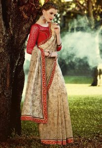 Cutdana Embroidered Chiffon Saree